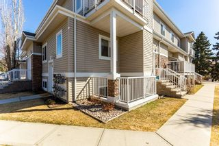 Photo 31: 29C 79 BELLEROSE Drive: St. Albert Carriage for sale : MLS®# E4238684