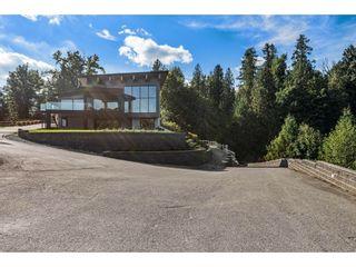 "Photo 46: 29798 GIBSON Avenue in Abbotsford: Bradner House for sale in ""Bradner"" : MLS®# R2620996"