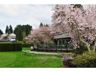 Photo 6: 12 14065 NICO WYND Place in Surrey: Elgin Chantrell Home for sale ()  : MLS®# F1440781