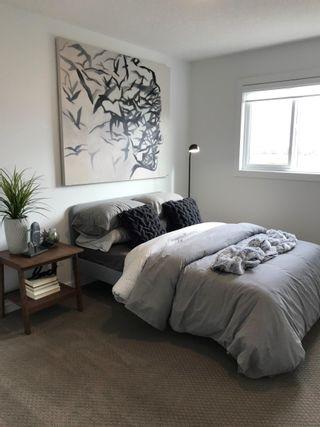 Photo 7: 20007 26 Avenue NW in Edmonton: Zone 57 House for sale : MLS®# E4264930