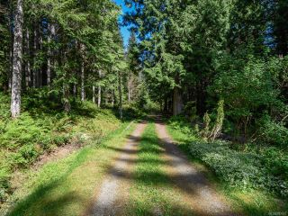 Photo 8: 5999 FORBIDDEN PLATEAU ROAD in COURTENAY: CV Courtenay West House for sale (Comox Valley)  : MLS®# 787510