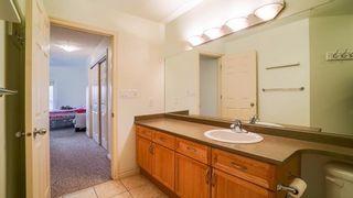 Photo 32: 210 260 STURGEON Road: St. Albert Condo for sale : MLS®# E4241019