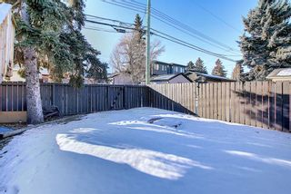 Photo 41: 1419 31 Street SW in Calgary: Shaganappi Detached for sale : MLS®# A1063406