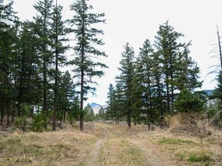 Photo 7: 5511 BARNHARTVALE ROAD in Kamloops: Barnhartvale Lots/Acreage for sale : MLS®# 161226
