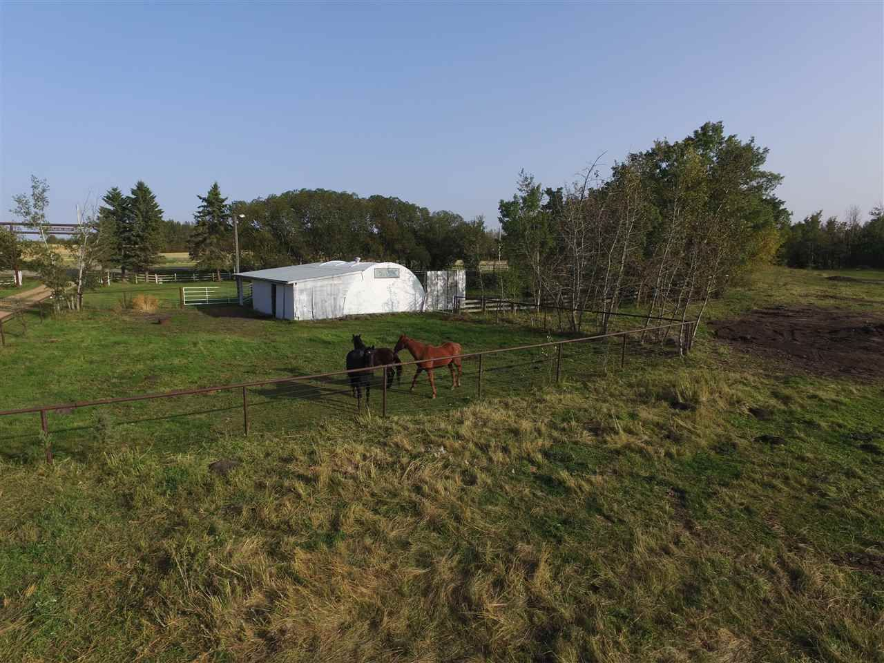 Photo 17: Photos: 472050A Hwy 814: Rural Wetaskiwin County House for sale : MLS®# E4213442