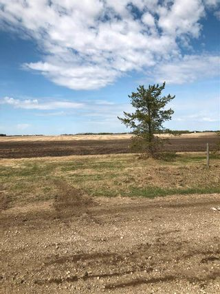 Photo 6: RR 255 & HWY 37: Rural Sturgeon County Rural Land/Vacant Lot for sale : MLS®# E4244134