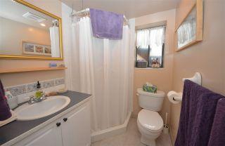 Photo 12: 20830 117 AVENUE in Maple Ridge: Southwest Maple Ridge House for sale : MLS®# R2001082