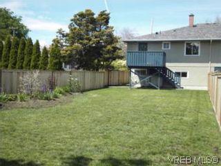 Photo 13: 1607 Chandler Ave in VICTORIA: Vi Fairfield East Half Duplex for sale (Victoria)  : MLS®# 504379
