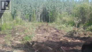 Photo 8: 3820 GOLDMAN ROAD in Quesnel: Vacant Land for sale : MLS®# R2612418