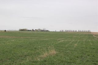 Photo 10: On Highway 567 in Rural Rocky View County: Rural Rocky View MD Land for sale : MLS®# C4233359