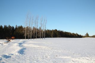 Photo 24: 370 ROSS CREEK Road in Ross Creek: 404-Kings County Farm for sale (Annapolis Valley)  : MLS®# 202102366