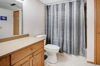 Photo 24: 3 Maple Way SE: Airdrie Detached for sale : MLS®# A1100248