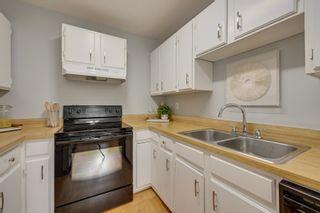 Photo 20: 10223 171A Avenue in Edmonton: Zone 27 House for sale : MLS®# E4255487