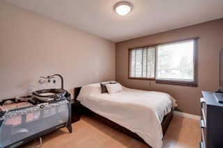 Photo 11: 7944 76 Avenue in Edmonton: Zone 17 House for sale : MLS®# E4255498