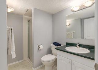 Photo 33: 115 Douglasview Bay SE in Calgary: Douglasdale/Glen Detached for sale : MLS®# A1108035
