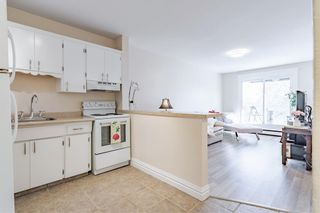 Photo 7: 16 101 25 Avenue SW in Calgary: Mission Apartment for sale : MLS®# A1081239
