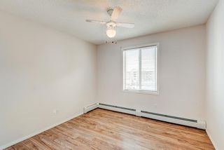 Photo 16: 1306 604 8 Street SW: Airdrie Apartment for sale : MLS®# A1066668