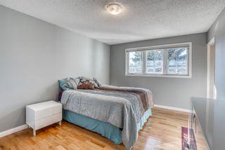 Photo 26: 543 Lake Newell Crescent SE in Calgary: Lake Bonavista Detached for sale : MLS®# A1081450