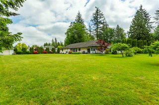 Photo 19: 23779 62 Avenue in Langley: Salmon River House for sale : MLS®# R2410662