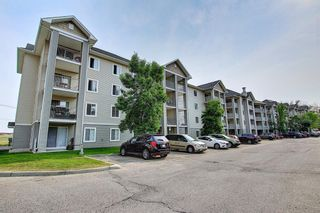 Main Photo: 3124 1620 70 Street SE in Calgary: Applewood Park Apartment for sale : MLS®# A1135542