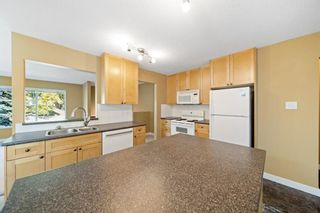 Photo 14: 5403 Dalhart Road NW in Calgary: Dalhousie Detached for sale : MLS®# A1144585