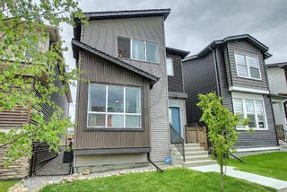 Photo 3: 139 Howse Lane NE in Calgary: Livingston Detached for sale : MLS®# A1118949
