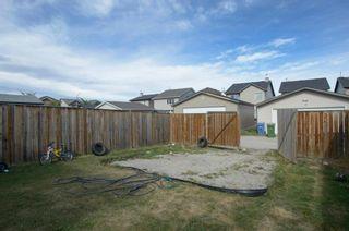 Photo 46: 218 SADDLEBROOK Way NE in Calgary: Saddle Ridge Detached for sale : MLS®# A1037263