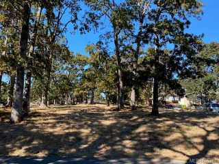 Photo 4: 978 A Milner Ave in : SE Lake Hill Land for sale (Saanich East)  : MLS®# 855352