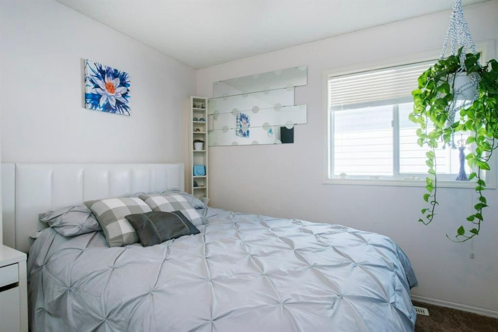 Photo 20: Photos: 10 MT BREWSTER Circle SE in Calgary: McKenzie Lake Detached for sale : MLS®# A1025122
