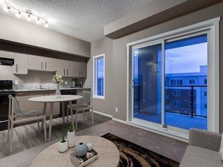 Photo 10: 1611 4641 128 Avenue NE in Calgary: Skyview Ranch Apartment for sale : MLS®# A1029088