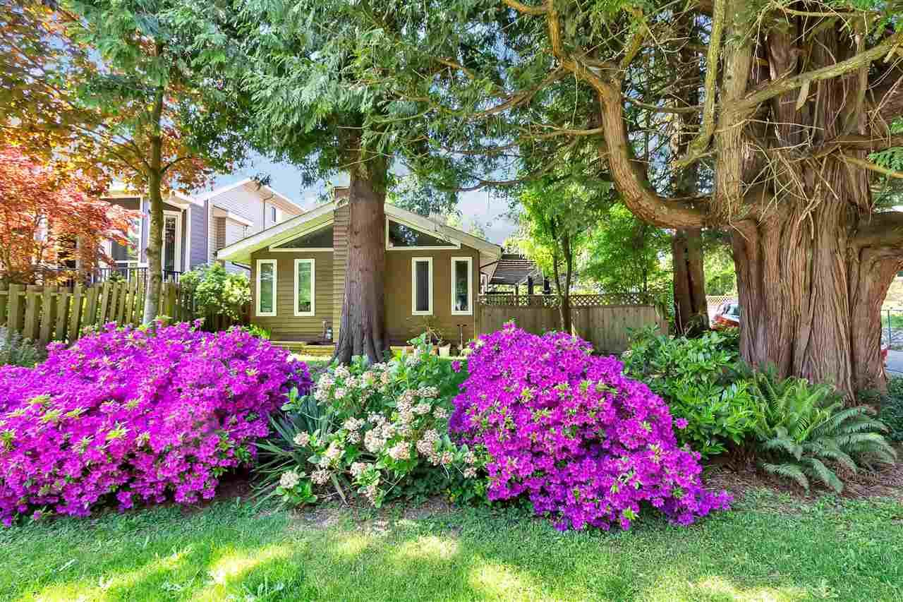 "Main Photo: 10851 152 Street in Surrey: Bolivar Heights House for sale in ""birdland"" (North Surrey)  : MLS®# R2576176"