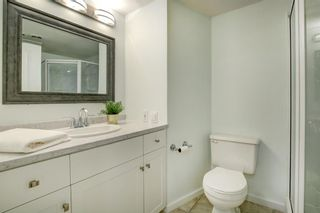 Photo 23: 432 96 Avenue SE in Calgary: Acadia Detached for sale : MLS®# A1045467