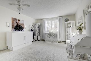 Photo 22: 603 333 2 Avenue NE in Calgary: Crescent Heights Apartment for sale : MLS®# A1071808
