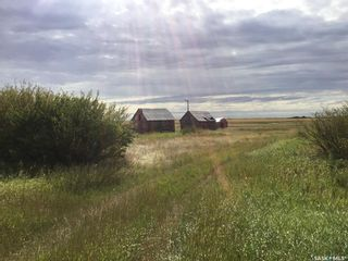Photo 3: Wilkinson Land in Perdue: Lot/Land for sale : MLS®# SK824065