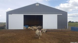 Photo 22: Lockhart Farm in Canwood: Farm for sale (Canwood Rm No. 494)  : MLS®# SK828997