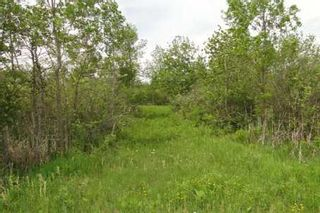 Photo 2: L11 Concession 3 Road in Brock: Beaverton Property for sale : MLS®# N2579342