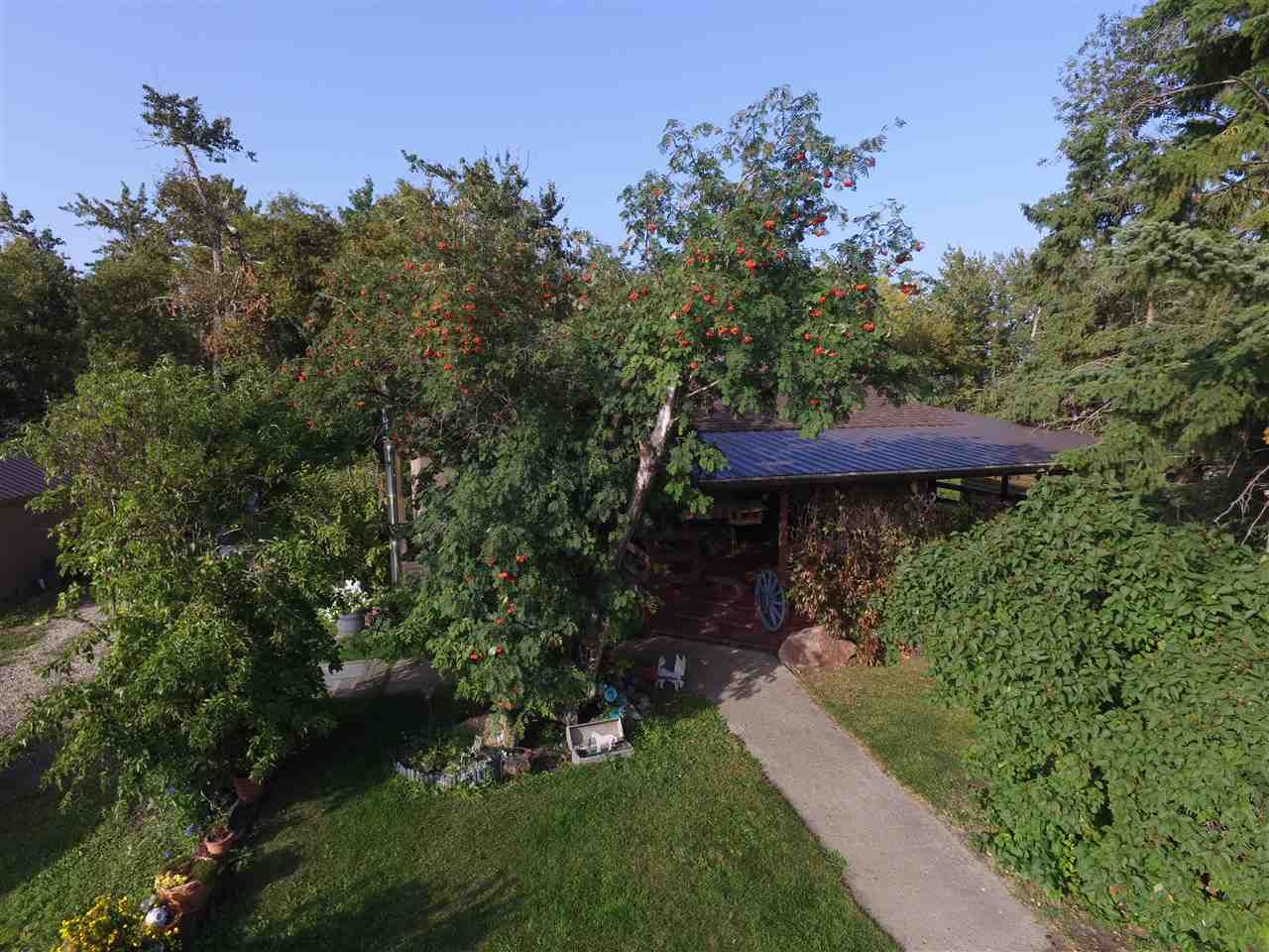 Photo 4: Photos: 472050A Hwy 814: Rural Wetaskiwin County House for sale : MLS®# E4213442