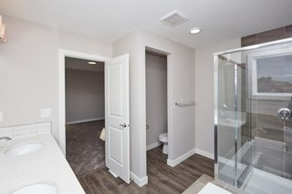 Photo 34: 51 Walden Place SE in Calgary: Walden Detached for sale : MLS®# A1051538