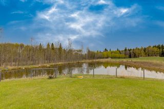 Photo 50: 298034 218 Street W: Rural Foothills County Detached for sale : MLS®# A1111526