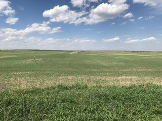 Photo 3: 466 Avenue: Rural Vulcan County Land for sale : MLS®# A1049257