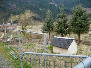 Photo 19: 2351 BODNAR Road: Agassiz House for sale : MLS®# H1401056