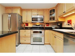 """Photo 4: 301 1088 QUEBEC Street in Vancouver: Mount Pleasant VE Condo for sale in """"VICEROY"""" (Vancouver East)  : MLS®# V974256"""