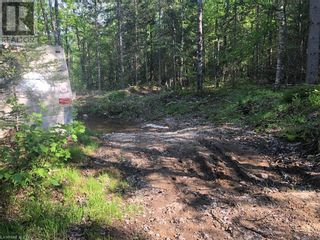 Photo 6: N/A RANEY Road E in Sundridge: Vacant Land for sale : MLS®# 40129602