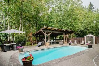"""Photo 33: 24625 MCCLURE Drive in Maple Ridge: Albion House for sale in """"THE UPLANDS"""" : MLS®# R2498339"""
