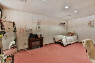 Photo 24: 35 Abergale Close NE in Calgary: Abbeydale Detached for sale : MLS®# C4267496