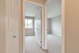 Photo 19: 36 18010 98 Avenue in Edmonton: Zone 20 Townhouse for sale : MLS®# E4255398