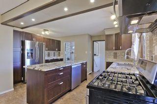 Photo 22: 43 COLLINGWOOD Avenue: Spruce Grove House for sale : MLS®# E4254210