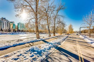 Photo 26: 106 728 3 Avenue NW in Calgary: Sunnyside Apartment for sale : MLS®# A1061819