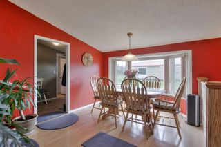 Photo 27: 52117 RGE RD 53: Rural Parkland County House for sale : MLS®# E4246255