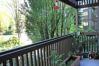 """Photo 11: 116 13507 96 Street in Surrey: Whalley Condo for sale in """"Parkwoods - Balsam"""" (North Surrey)  : MLS®# R2180405"""